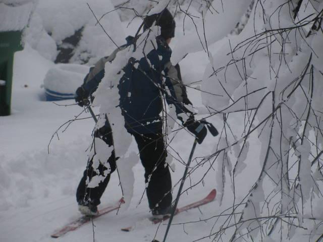 noah ski