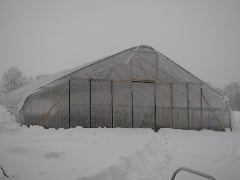 blizzard hoophouse