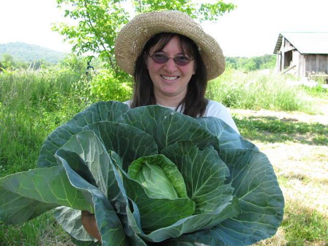 ilene and cabbage